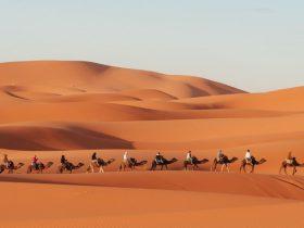 marrakech desert du sahara itineraire