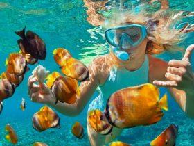 minorque plongee snorkeling